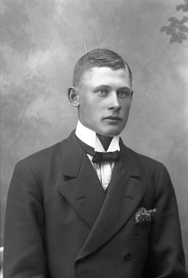 """Enligt fotografens journal Lyckorna 1909-1918: """"Pettersson Einar Kärr Ljungskile""""."""