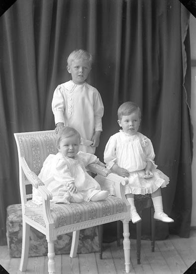 """Enligt fotografens journal nr 2 1909-1915: """"Anderström, Grosshandl. gr. m. barn Gbg""""."""