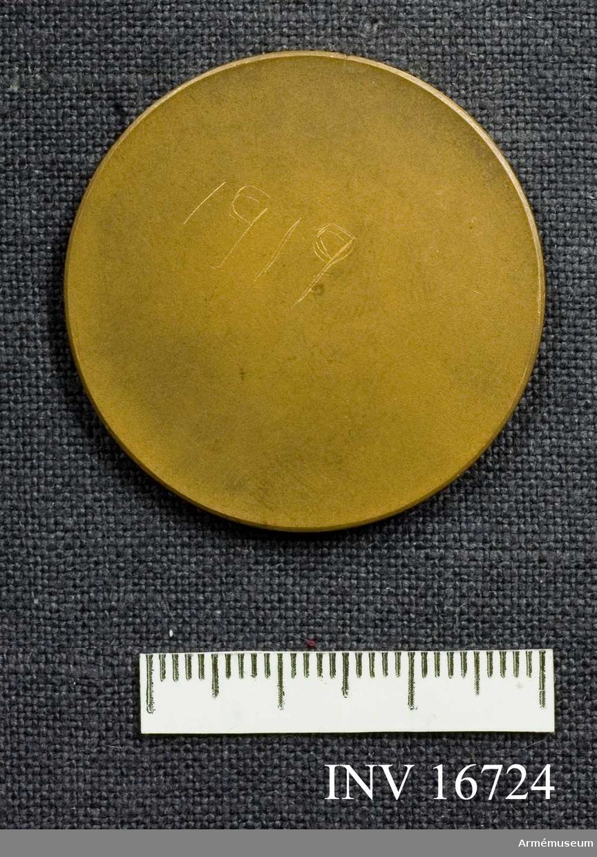 Riksskyttetäfling 1919. En bronsmedalj som visar en skytt som i sin högra hand håller den uppresta svenska flaggan och i den vänstra ett gevär. Han står bredvid en tall vid sjökanten. På baksidan är årtalet 1919 inritsat.  Samhörande nr är AM.16715-16732