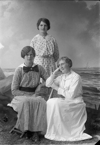 """Enligt fotografens journal nr 3 1916-1917: """"Landén, Hulda Tveten Spekeröd""""."""