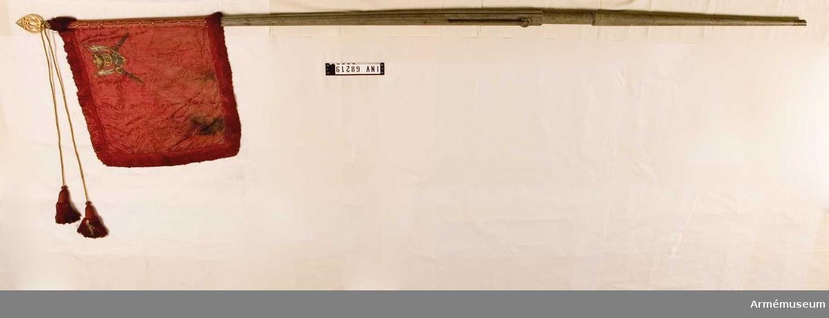 Standar fört av Tavastehus och Nylands tremänningar. Förfärdigat enligt Karl XII:s förordning av den 2 augusti 1700.  Duk av enkel, karmosinröd sidendamast, sammansydd av två våder horisontellt. Mönsterrapport på damasten: b 165 mm x h 220 mm (jfr nr 201).  Dekor: Målad i övre, inre hörnet lika på båda sidor: tornerhjälm i guld och silver, och bakom denna två korsade tvåuddiga banér med gyllene kors på blå duk (Södra Finlands vapen), allt 200 mm högt. Frans: dubbel, karmosinröd silkesfrans. Banderoller: snoddar i gult och rött silke Duken fäst med tre rader tennlickor på ett gult och rött band.  Stång av trä, kannelerad, gråmålad. Löpande bärring. Doppsko av järn. Holk och spets av förgylld mässing, spets med spegelvänt C under sluten krona.  Leif Törnqvists kommentar vid inventering 2007: Standaret samhörigt med AM.068215. Se detta nummer för kommentar.