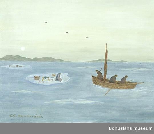 """Baksidestext:  """"Det hände sig vid ett flertal tillfälle att det kom Kvinnor drivande på isflak både döda och levande, hit till Kusten omk. mitten av 1800 talet. Kvinnor som tvättat på isen uppe i de Norska fjordarna. Då isen plötsligt Lossat från land och drivit till havs. Men även från Danska landet hade det kommit folk drivande på isflak. Folklivsskildring Skaftö. C.G. Bernhardson.""""  Litteratur: Bernhardson, C.G.: Bohuslänsk sed och folktro, Uddevalla, 1982, s. 49.  Titel i boken: """"Drivis. - - - Anledningen till att det var kvinnor som drev omkring på isflak var, att dessa kvinnor icke uppmärksammat att isen plötsligt lämnat land; utan plötsligt befunnit sig på drift till havs på ett isstycke belamrat med allehanda böstepallar, baljor, kälkar m.m. Det var kvinnor hemmahörande både från Norge och Danmark, som drev iland på den bohuslänska kusten i gången tid. Tidsbild 1850-talet.""""  Övrig historik; se CGB001"""