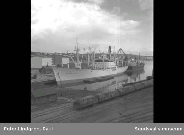 """Fartyg i hamnen. """"Vikingland"""" och"""" Hamlet""""."""