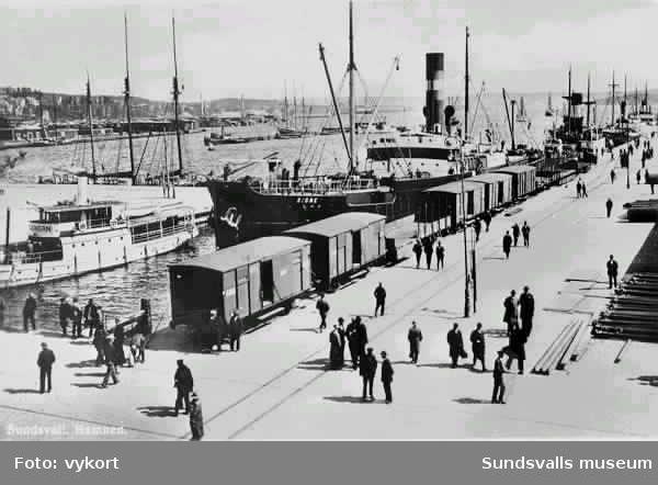 Livlig trafik i Sundsvalls hamn 1931.