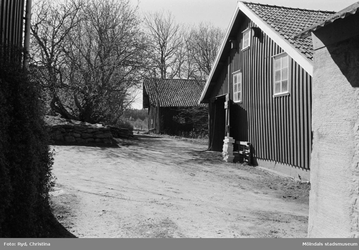 Ladugården till Eklunds gård i Sagered, 1991.