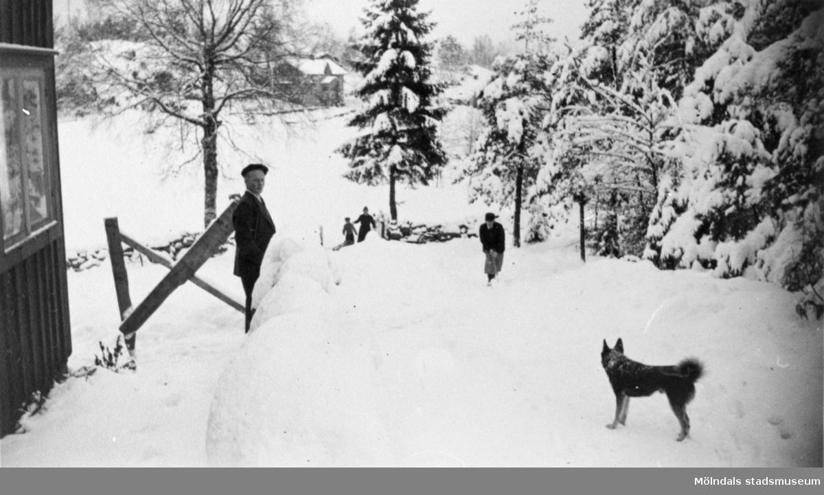 Vy mot Långö. Vinter på Långö, 1940. Arvid Svensson vid Margots Perssons sommarhus,