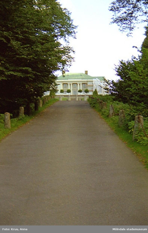 Gunnebo slott - parken mot norra sidan.