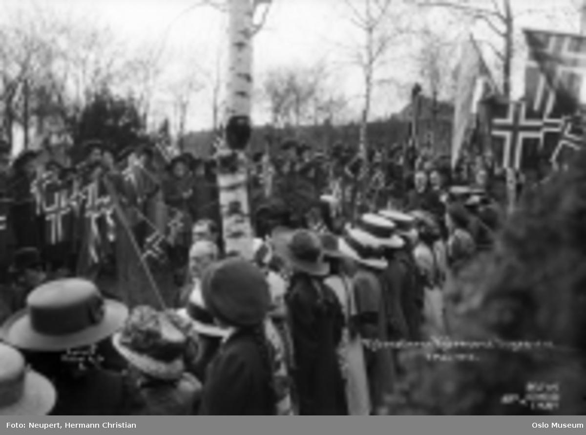 Bjørnstjerne Bjørnsons gravferd, gravlund, prosesjon, flagg, publikum