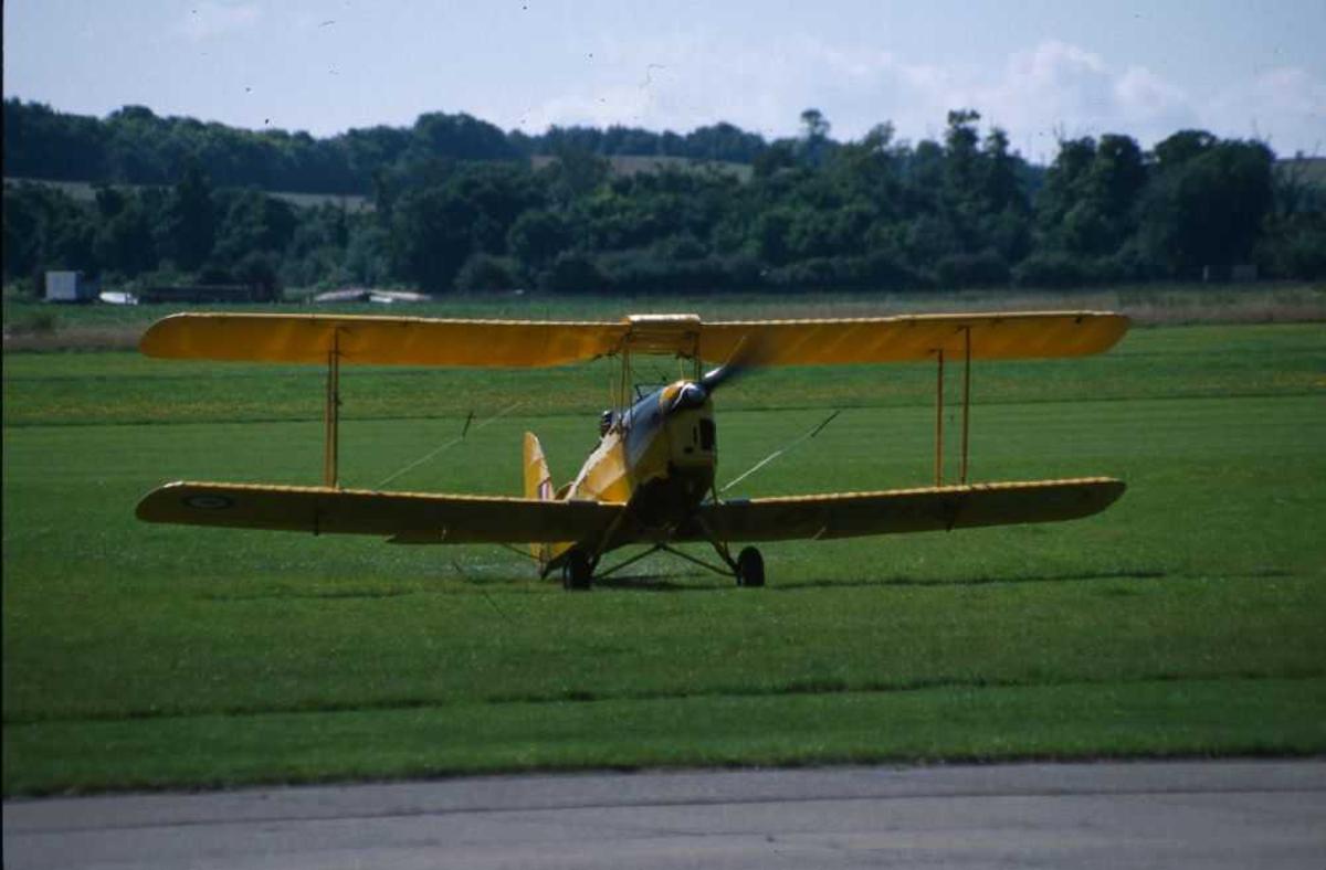 Ett fly på bakken, dobbeldekker.