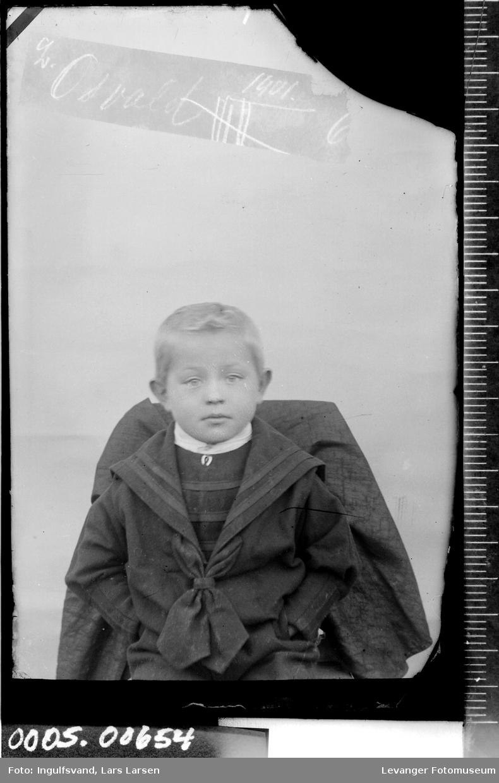 Portrett av gutt i halvfigur.