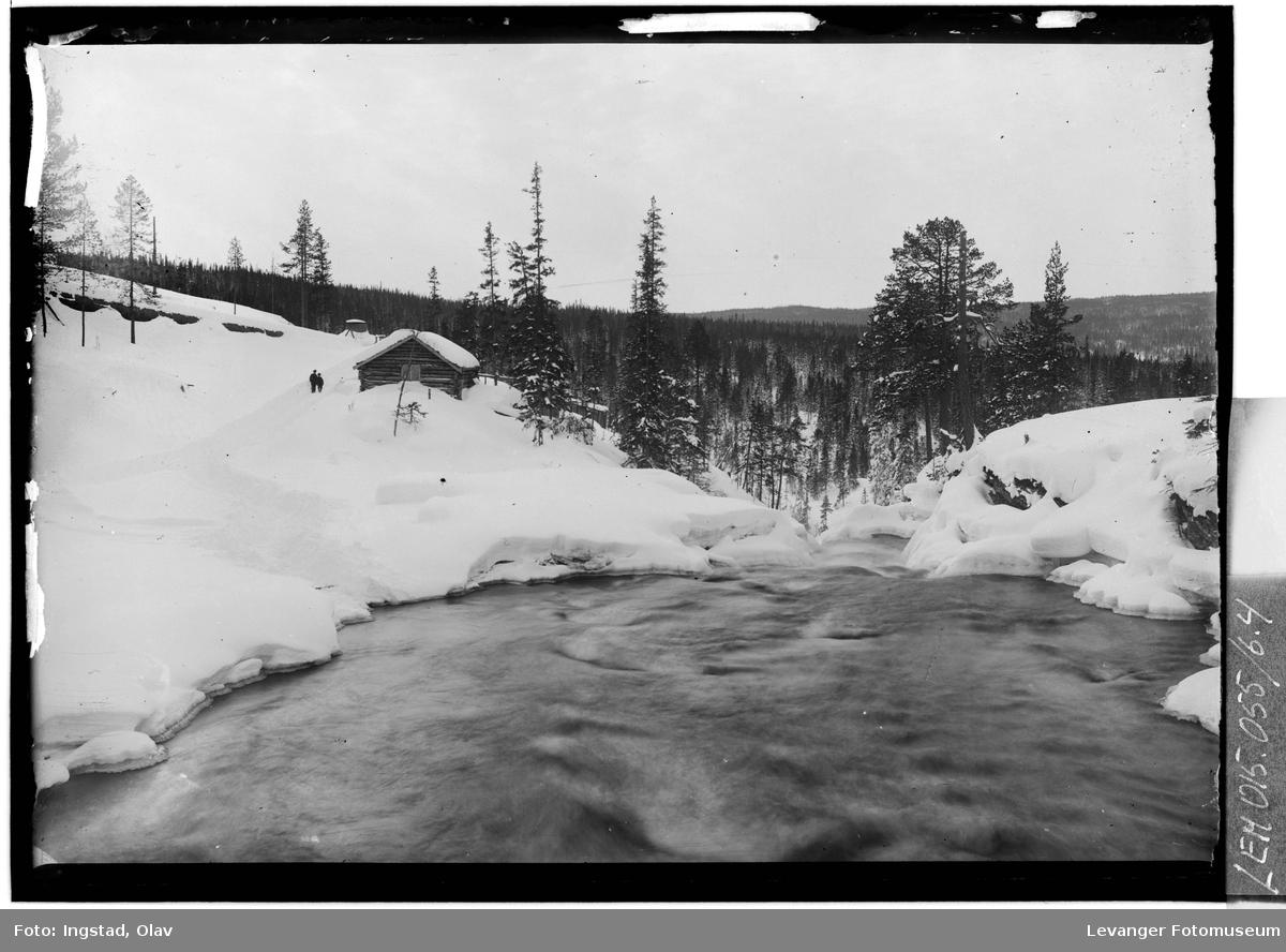 Natur og miljø i Kopperå X