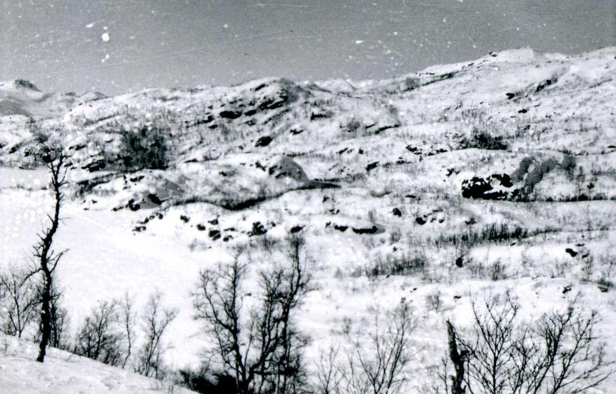 Bordalen. 43, februar 1958