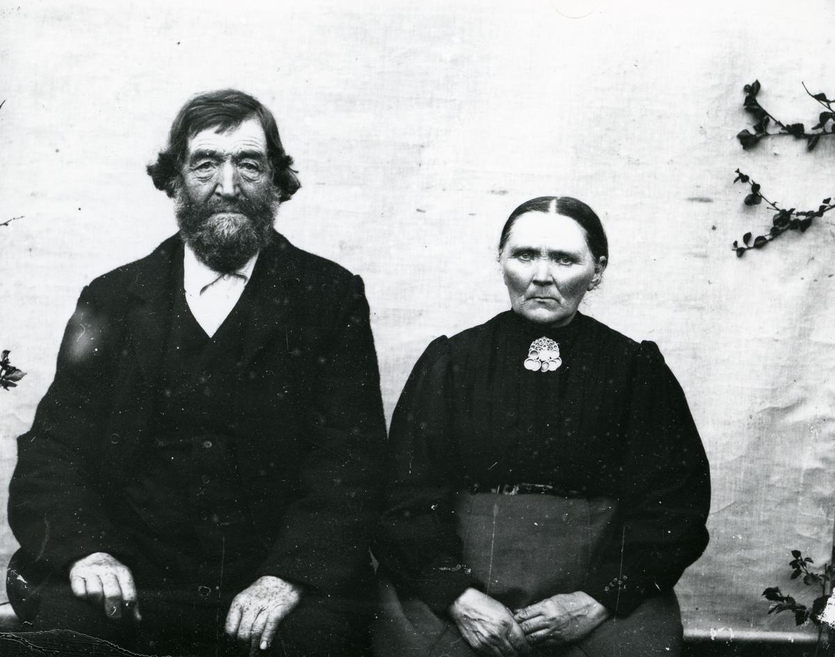 Eldre par, sittende foran lerret
