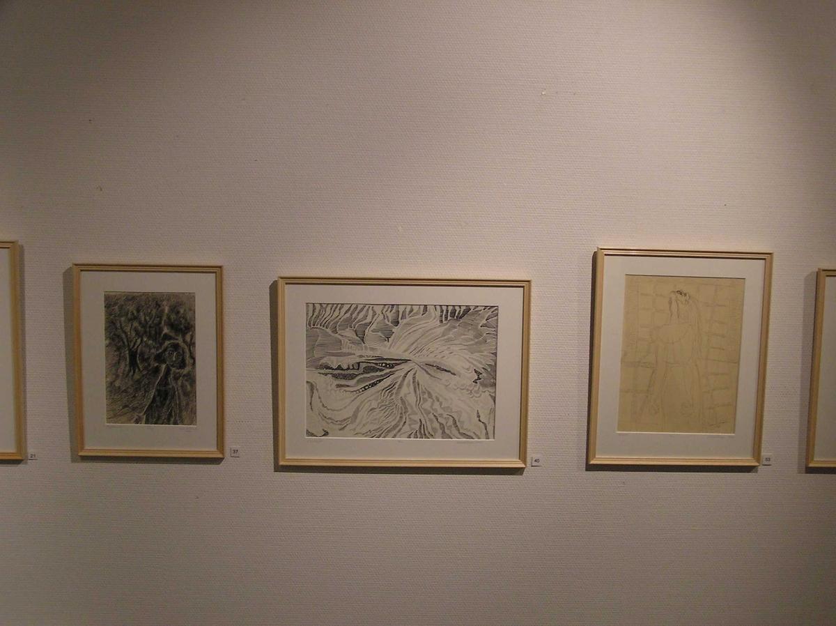 """Utstillingen """"Latter og Tårer"""" av tegningene til Synnøve Tangen (1929-2005) 2004 i malerisalen på Berg-Kragerø Museum"""