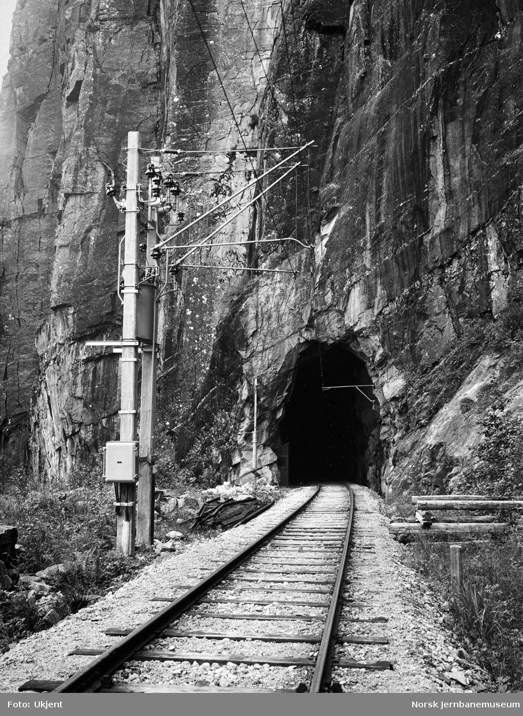 Kontaktledningsstolper på Hardangerbana - ved gammel linje i Skjervet