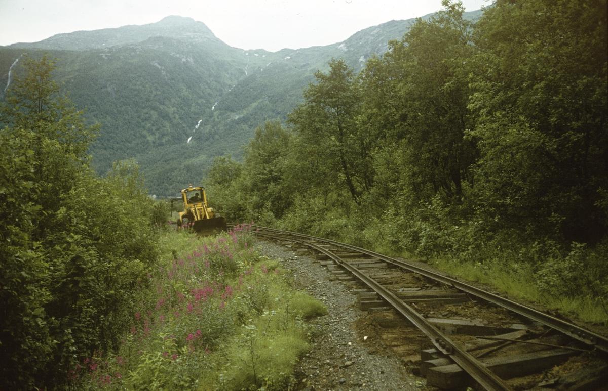 Sulitjelmabanen fra linjen mellom Hellarmo og Sjønstå.