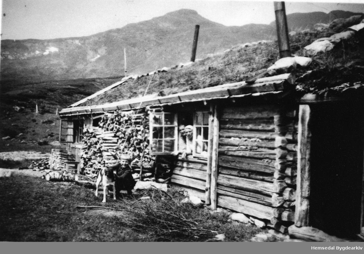 Stølsbua til garden Haug i Hemsedal. Fremst i stølsglaset: Guri Kven. Stølen har ikkje vore brukt av Haug sidan 1938