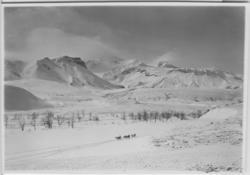 'Fjällvärld i snö med en hundsläde på avstånd. :: (foten av