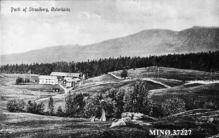 Parti af Straalberg, Østerdalen
