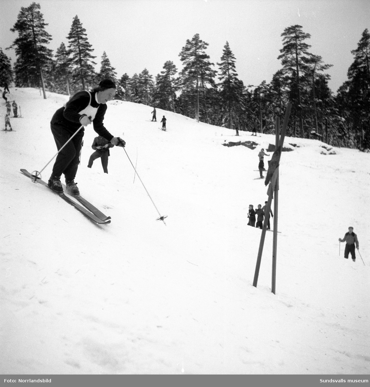 Slalomtävling i Sundsvall, bilder på hemmaåkarna.