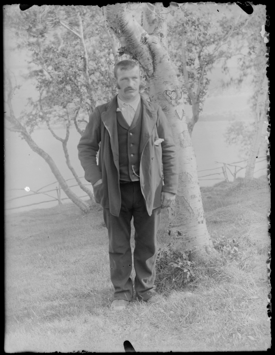 Ukjent mann fotografert ved bjørketre med hjerte i barken
