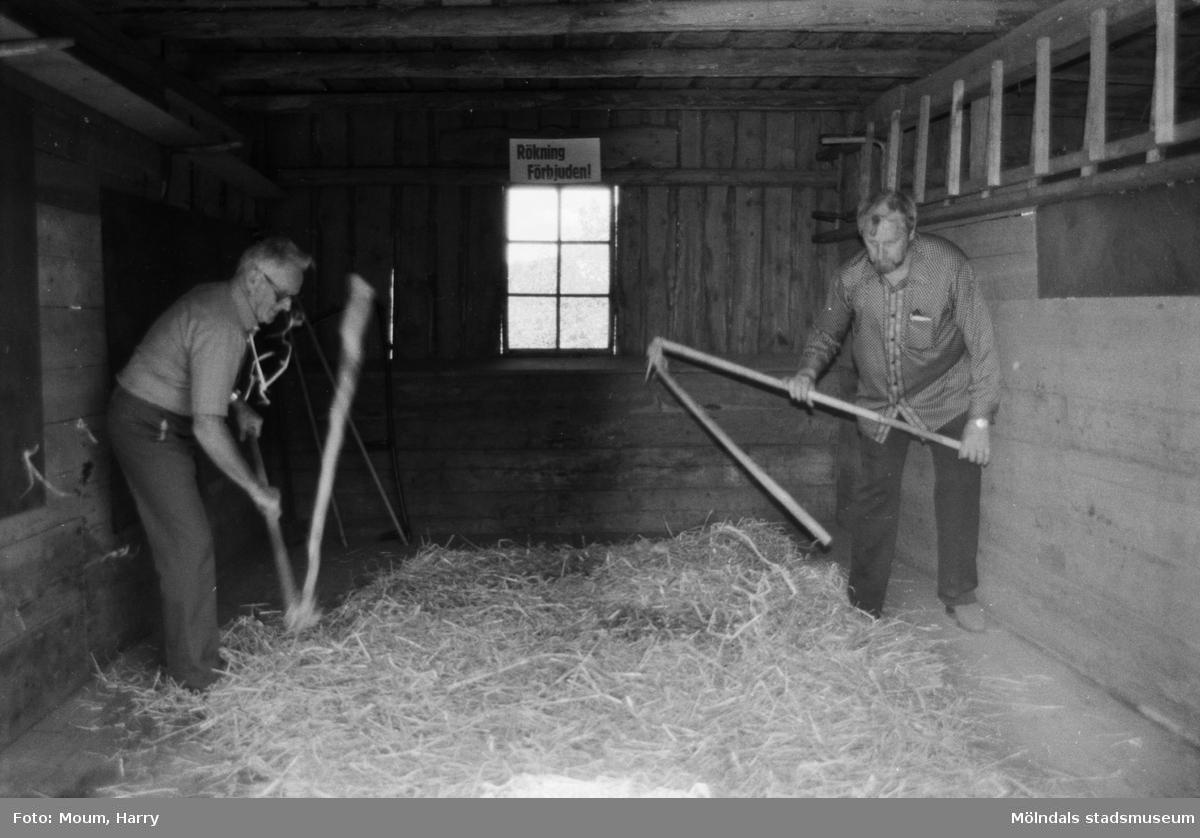 """Lindome Hembygdsgille firar 20-årsjubileum på Börjesgården i Hällesåker den 23 juli år 1983. """"Sven i Hegna (Zackrisson) och Karls Tage (Larsson) visade publiken hur man prejlar.""""  För mer information om bilden se under tilläggsinformation."""