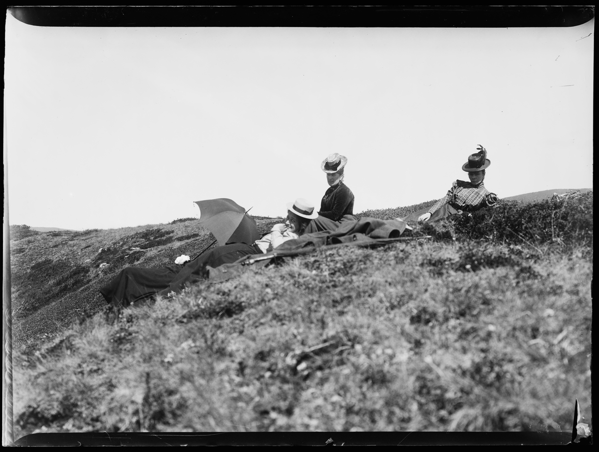 Fire damer ligger i lyngen på fjellet. En har en parasol.