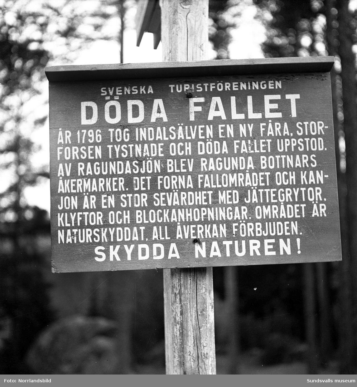 En serie bilder från Döda fallet i Ragunda.