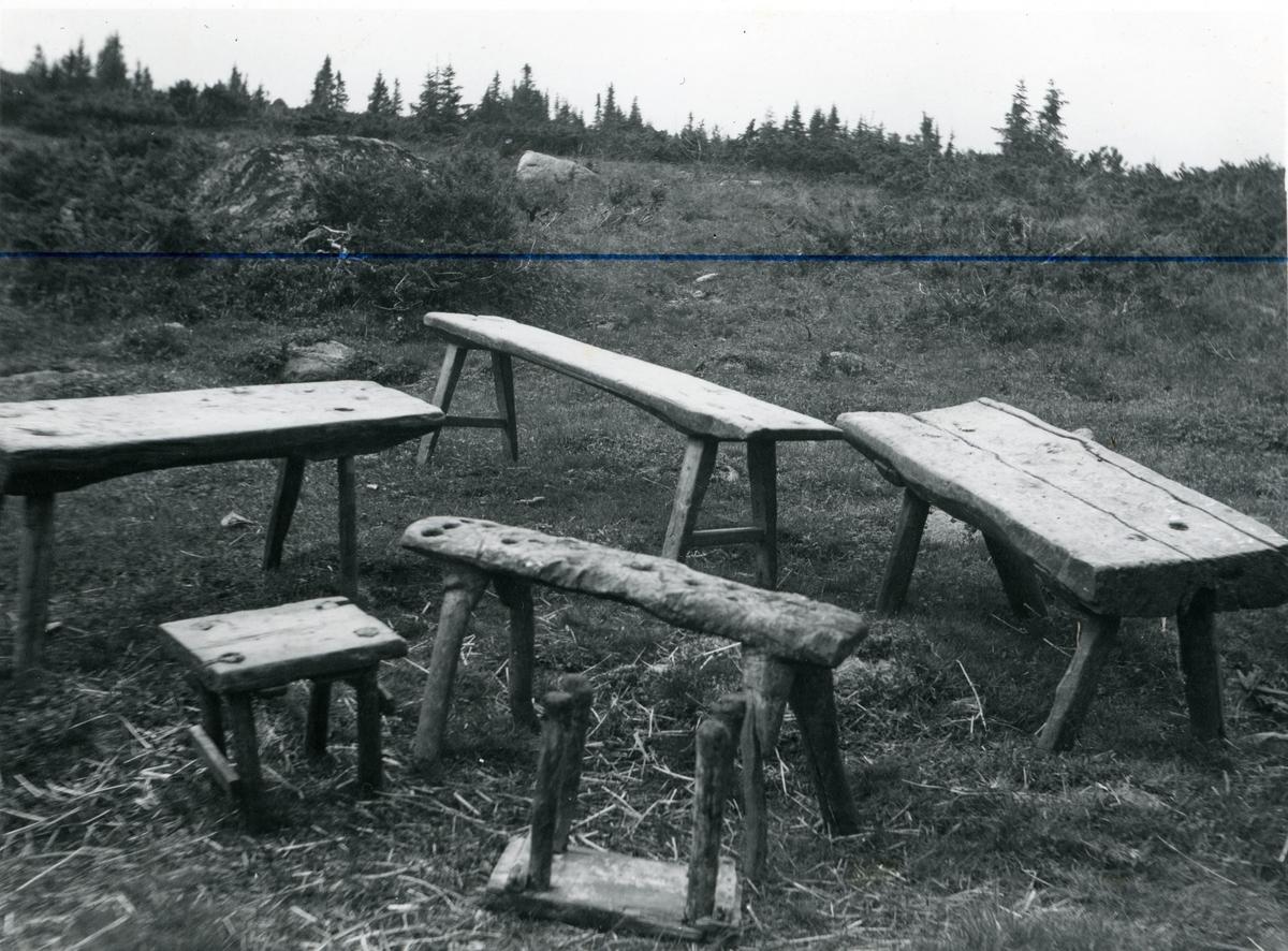 Stølskrakker på Ølnesstølen i Sør-Aurdal.