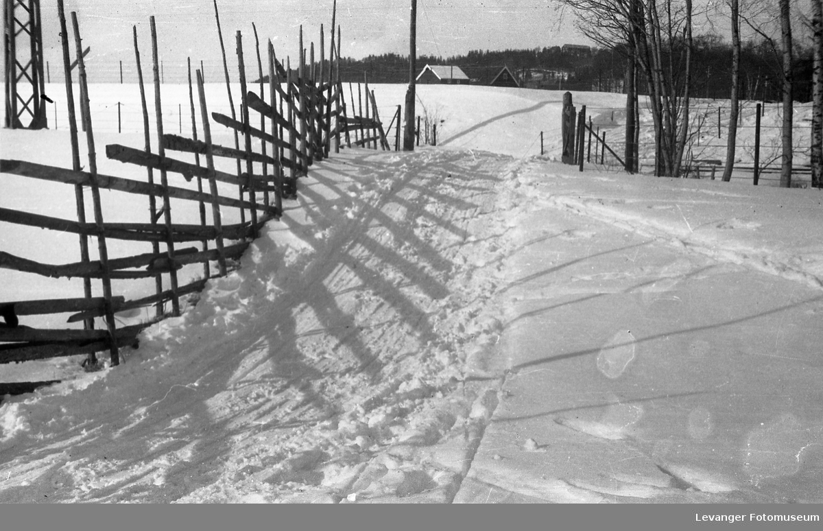 Vintermotiver.  Molunden hette området øst for Mo Gård og mot Levangerelva.