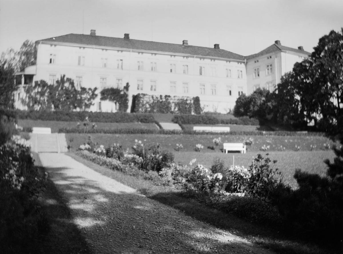 Terrassehagen med trapper, stier og hekker og andre hagevekster på Linderud Gård i blomstringstiden. I bakgrunnen hovedhuset.