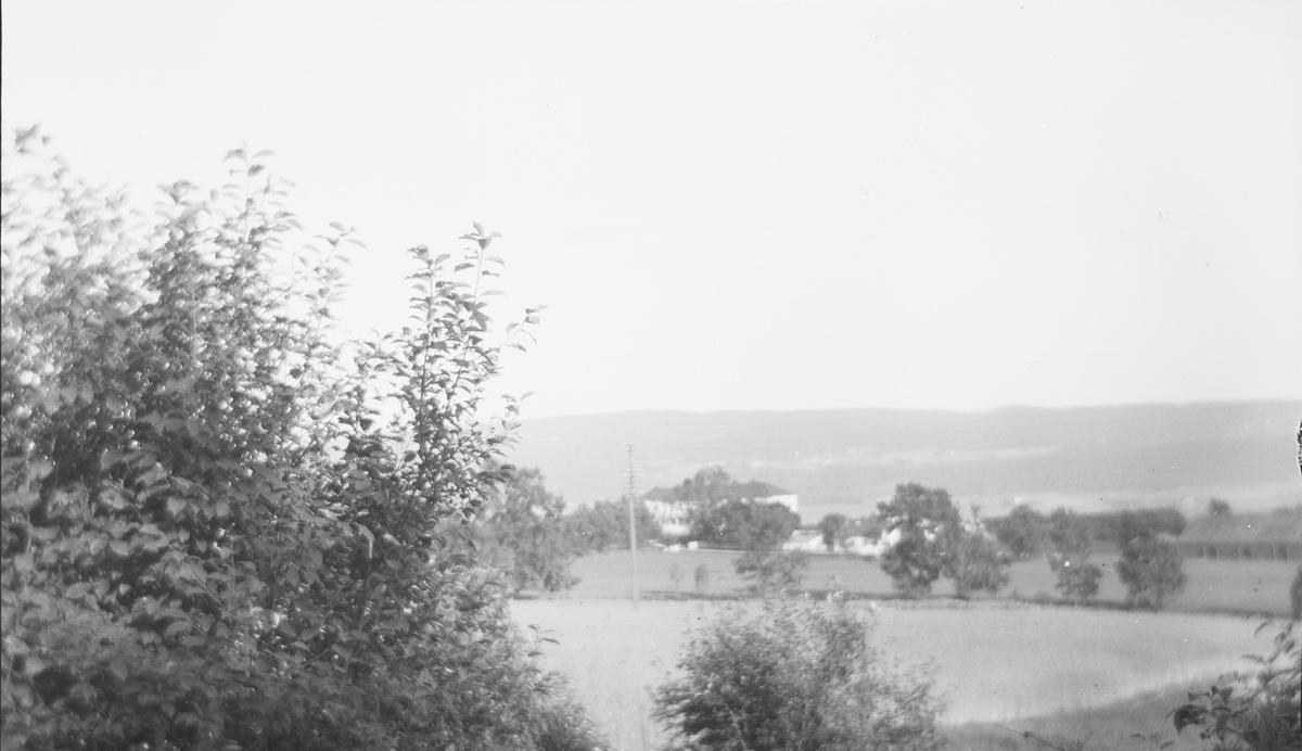 Linderud Gård med bl. a. drivhus ligger i et landskap av åker og eng.