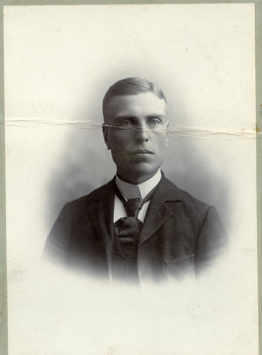 Portrett i halvfigur av ung mann. han er kledd i dress og slips.