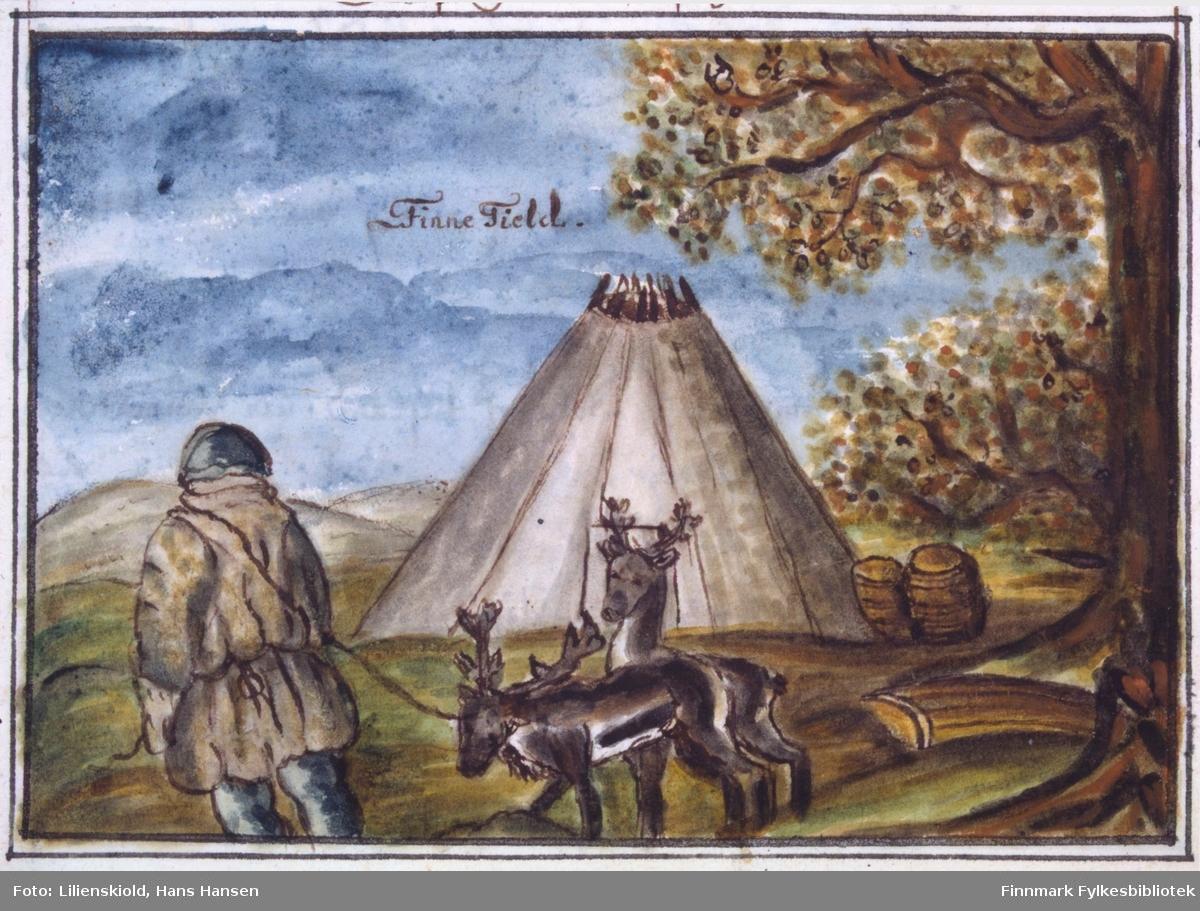 Finne Tield. Illustrasjon til kapittelet om boforhold i Finnmark, der Lilienskiold beskriver hvordan samene setter opp en lavvo. I forgrunnen en reineier med to reinsdyr. Utenfor lavvoen står pulker og annet utstyr stablet opp