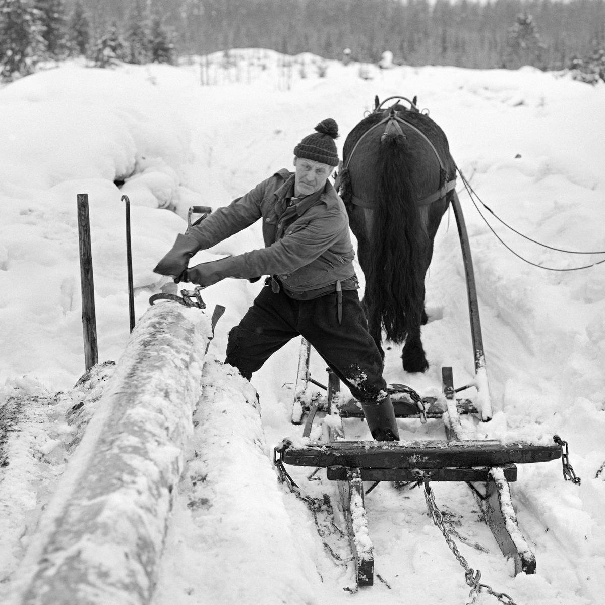 Skogsarbeider Johan Rasch i Svartholtet, Elverum, 1975 (Foto/Photo)