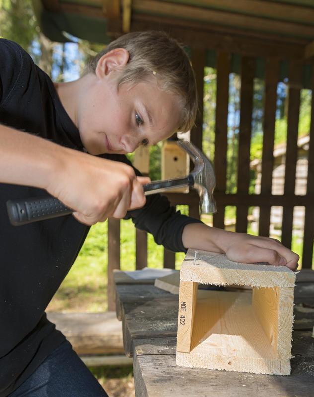 Gutt snekrer fuglekasse under temadagene Skog og vann. 10/6 2014