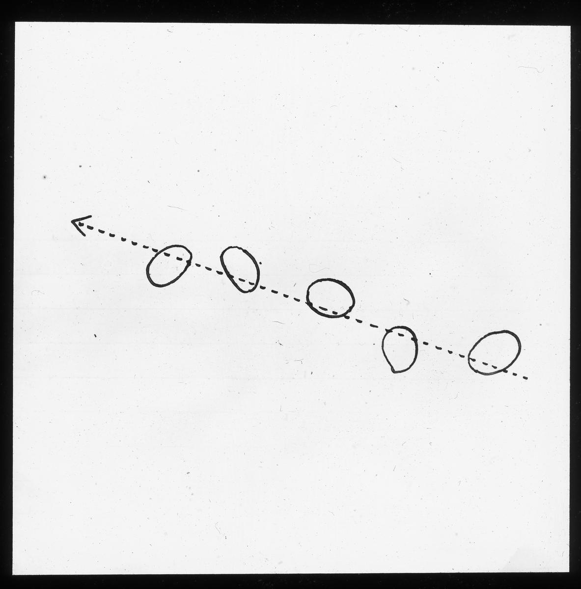 Skioptikonbild från Institutionen för fotografi vid Kungliga Tekniska Högskolan. Använd av professor Helmer Bäckström som föreläsningsmaterial. Bäckström var Sveriges första professor i fotografi vid Kungliga Tekniska Högskolan i Stockholm 1948-1958. Beskrivning av atom-strålning.