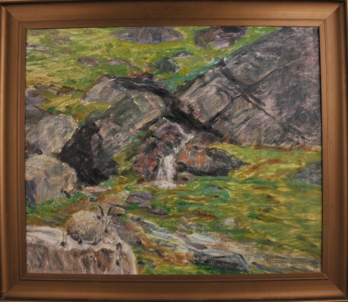 Frå Lifjell. Landskap i grønt og grått, fjellknausar og ei geit, nærbilete.