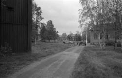 Reportagebilder från Vifstavarv. På första bilden ses den si