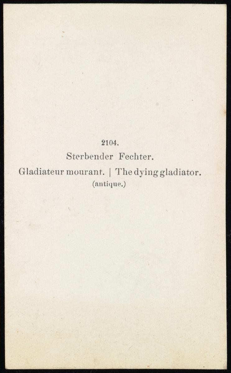 """Bildet av skulpturen """"Døende Galler""""."""