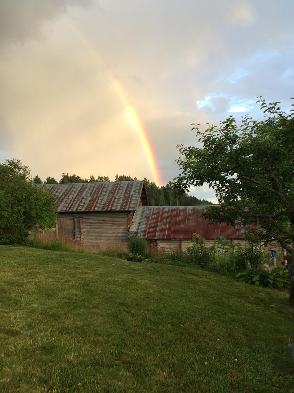 Regnbue over stallåven
