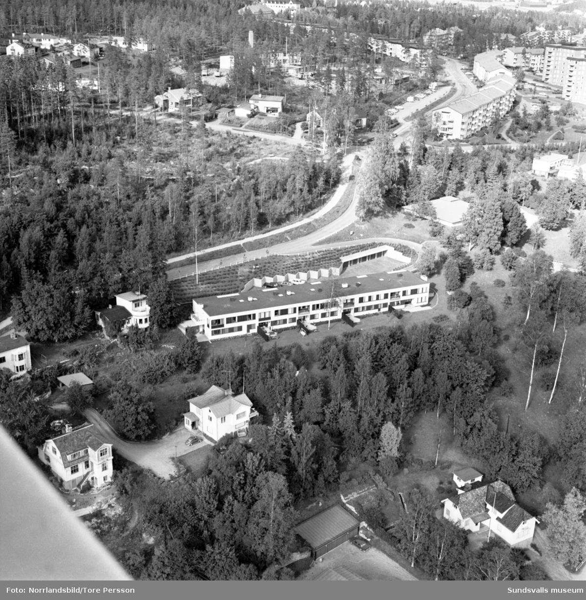 Flygfoto över villor i Stadsbacken, Baldersvägen, Norrliden. I bildens mitt radhuset på Baldersvägen 36-38.