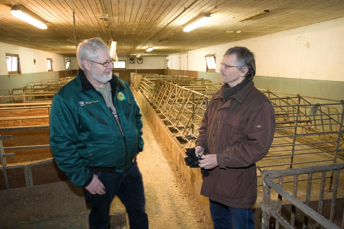 Grisebonde og konservator i nedlagt grisefjøs