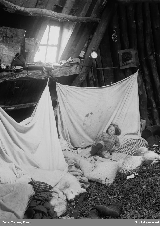 Interiör från Olof Andersson Ommas kåta i Strimasund. Morgonscen med rakkas och sängkläder. Ett barn och en hund ligger och sover.