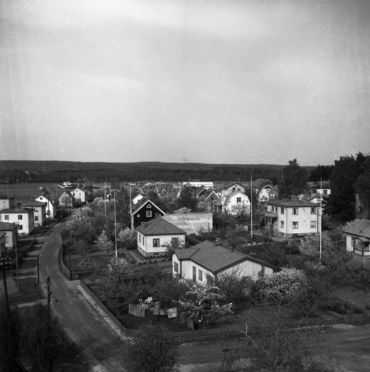 Villor på Lamberget med Lambergssgatan norrut år 1949