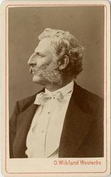 Porträtt av Carl Gustaf Ridderstolpe, kapten vid Svea livgar
