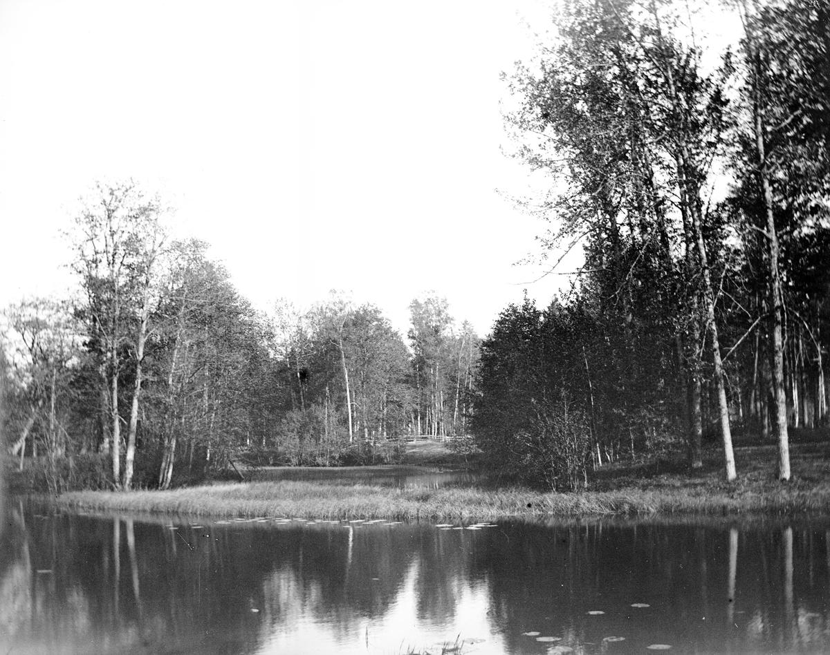 Vy av parken vid ån. Den 18 juni 1899