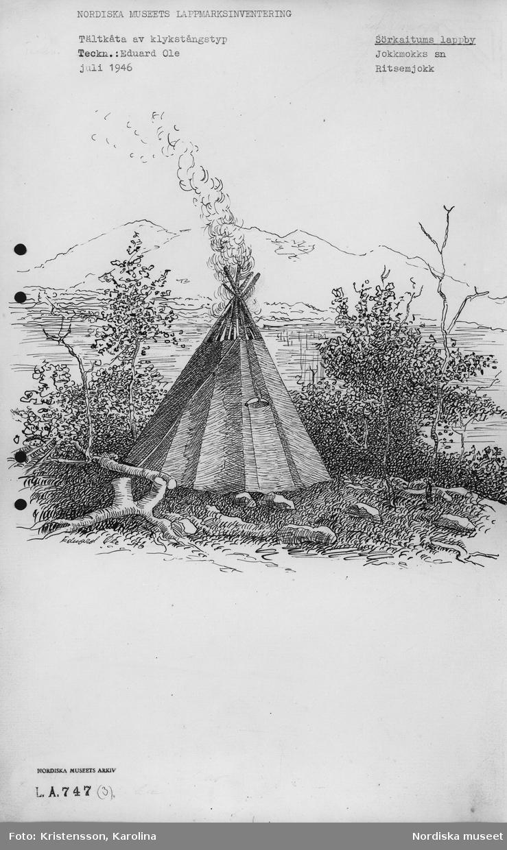 Nordiska museets Lappmarksinventering. teckning utförd av Eduard Ole i juli 1946 föreställande tältkåta av klykstångstyp i Sörkaitums lappby.