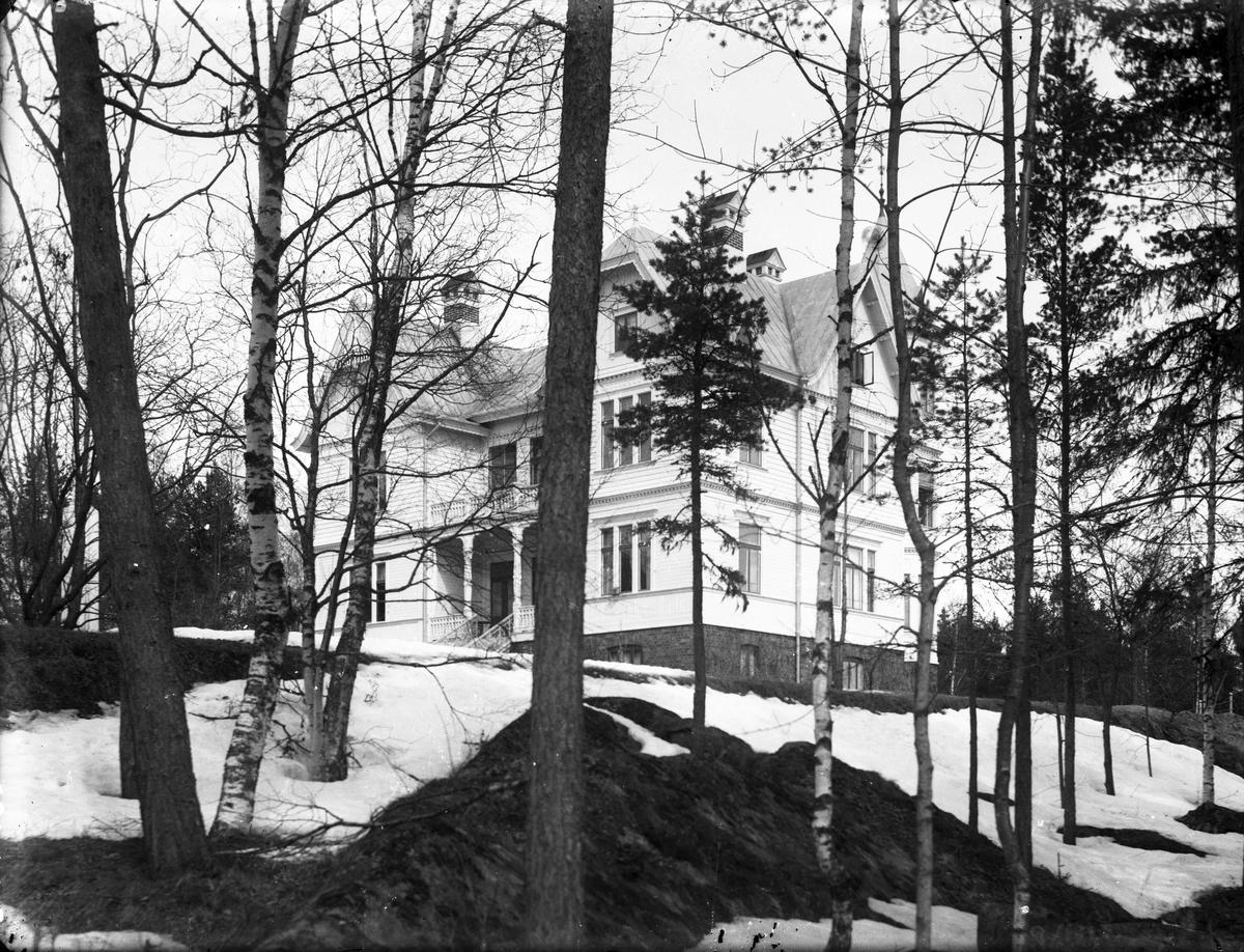 Större herrgårdsliknande villa, Direktörsvillan i Norrsundet.