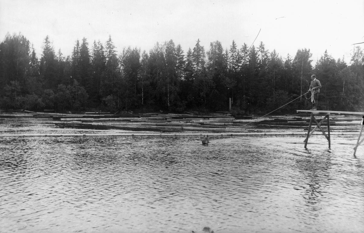 """Anställde ryttmästaren på herrgården badar en häst i """"Brubergsvika""""."""
